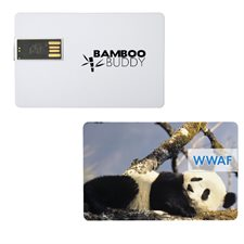 2gb infocard flash drive
